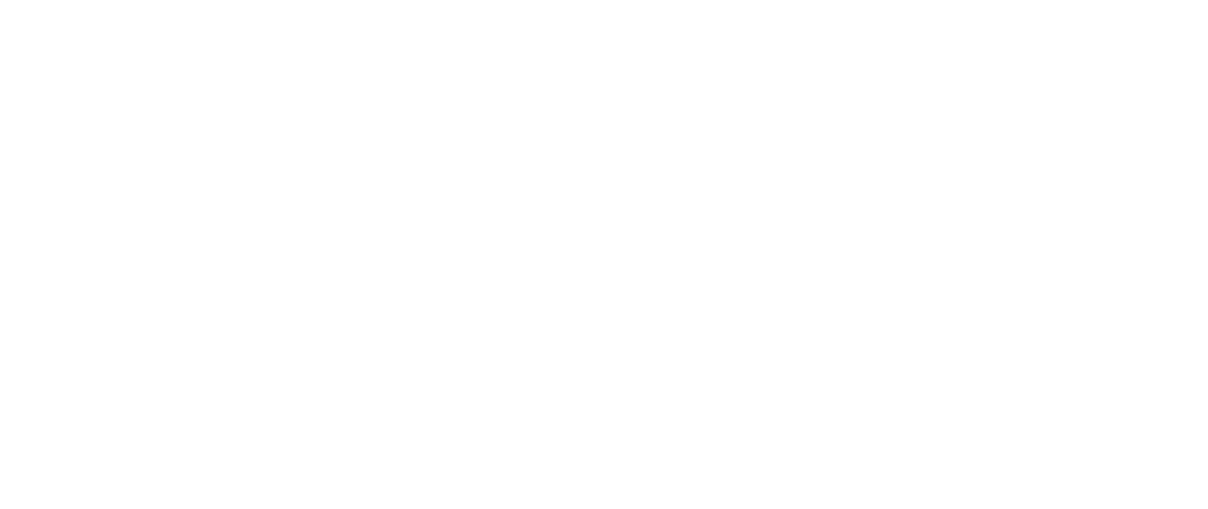 11 Nutritions